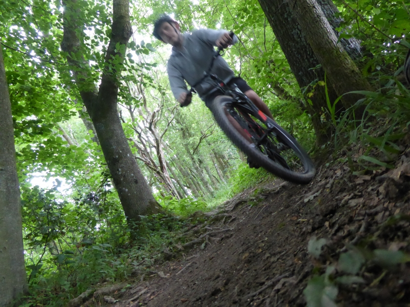 Biking in the woods at Deers Leap