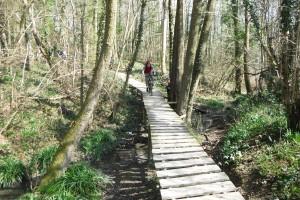 Sussex_bike1